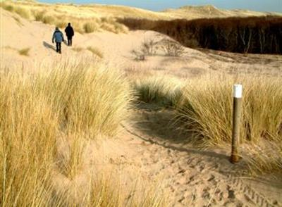 Dune Path, Ainsdale National Nature Reserve
